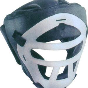 Head Protector